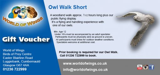 World Of Wings Owl Walk (short) Birds of Prey Experience Gift Voucher