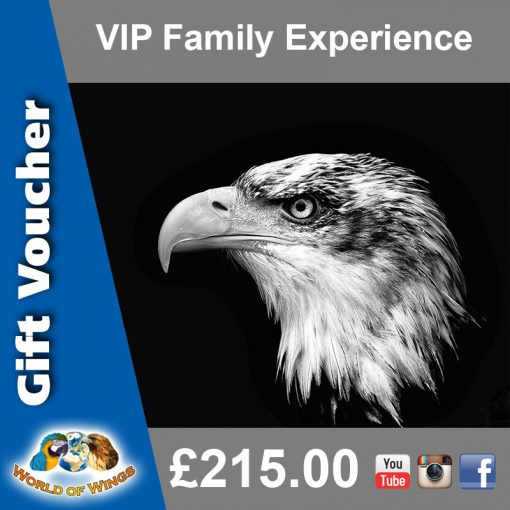 World Of Wings VIP Family Birds of Prey Experience Gift Voucher